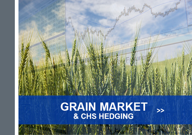 Grain Marketing & CHS Hedging - Your Vision. Our Insights. Click to Learn More.