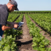 Using Soil Sampling Results To Improve Your Next Crop