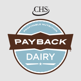 Payback Dairy Feed