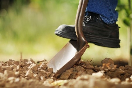 call 811 before digging